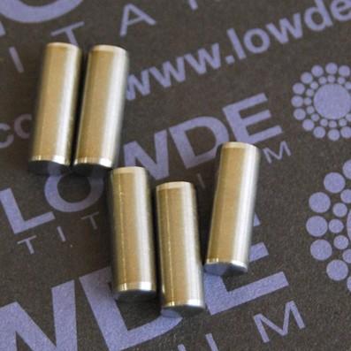 Pin ISO 2338 Ø5x14 mm. tol. h8 de Titanio gr. 5 (6Al4V)