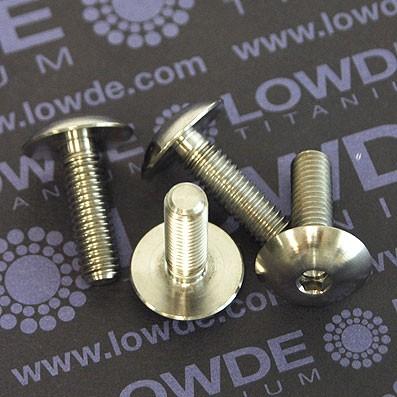 Boton ISO 7380 M6x20 mm. de titanio gr. 5 (6Al4V). Diámetro cabeza: 16 mm. - 1 Tornillo de boton ISO 7380 M6x20 mm. de titanio gr. 5 (6Al4V). Diámetro cabeza: 16 mm.