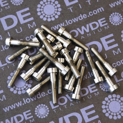 30 Screws LN 29950 M4x20 titanio gr. 5 (6Al4V)