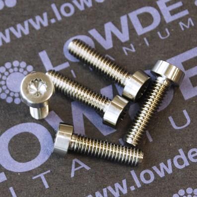LN 29950 M4x16 titanio gr. 5 (6Al4V) - 4 Screws LN 29950J0416 M4x16 mm. titanio gr. 5 (6Al4V) AMS 4928.
