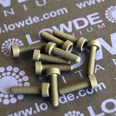 60 Screws LN 29950 M3x12 titanio gr. 5 (6Al4V)