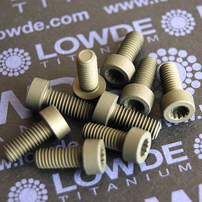 70 Screws LN 29950 M5x12 titanio gr. 5 (6Al4V)