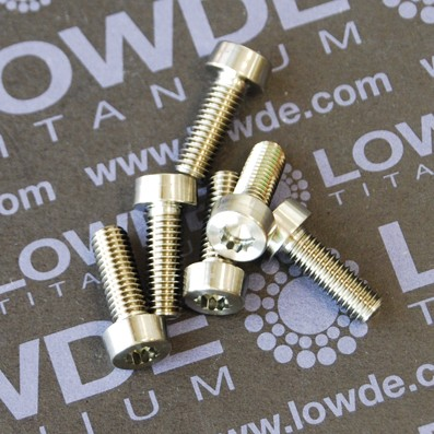 24 Screws LN 29950 M5x14 titanio gr. 5 (6Al4V) - 24 Items LN 299500514 M5x0,80x14 mm. titanio gr. 5 (6Al4V) AMS 4928.