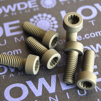 21 Screws LN 29950 M6x16 titanio gr. 5 (6Al4V) - 21 Items LN 299500616B M6x16 mm. titanio gr. 5 (6Al4V) AMS 4928.