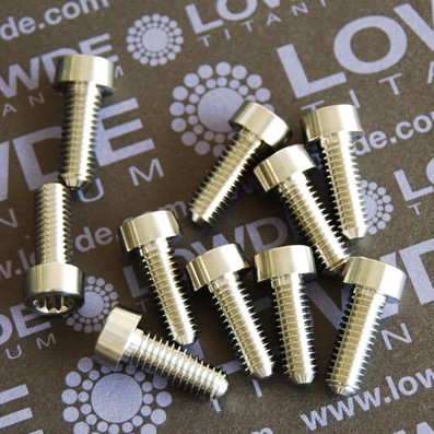18 Screws LN 29950 M6x18 titanio gr. 5 (6Al4V)