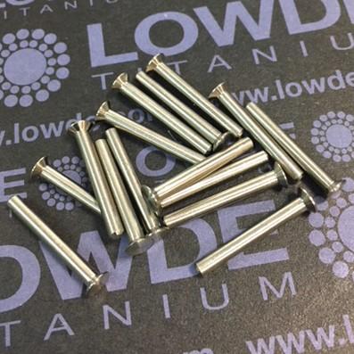 Remache DIN LN9199 S-24 de titanio gr. 2 - Remache DIN LN9199 S-24 de titanio gr. 2