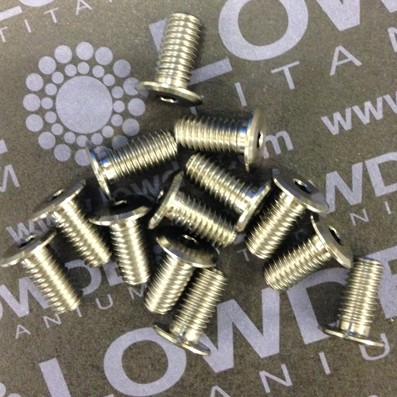 Cabeza ultrabaja M5x10 mm. de Titanio grado 5 (6Al-4V) - Cabeza ultrabaja M5x10 mm. de Titanio grado 5 (6Al-4V)